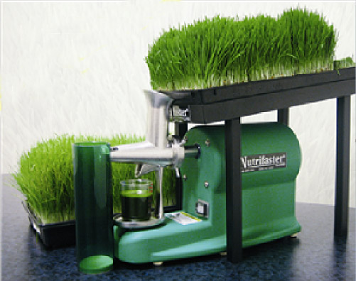Vegetable Amp Specialty Juicers Zummo And Zumex Juicers